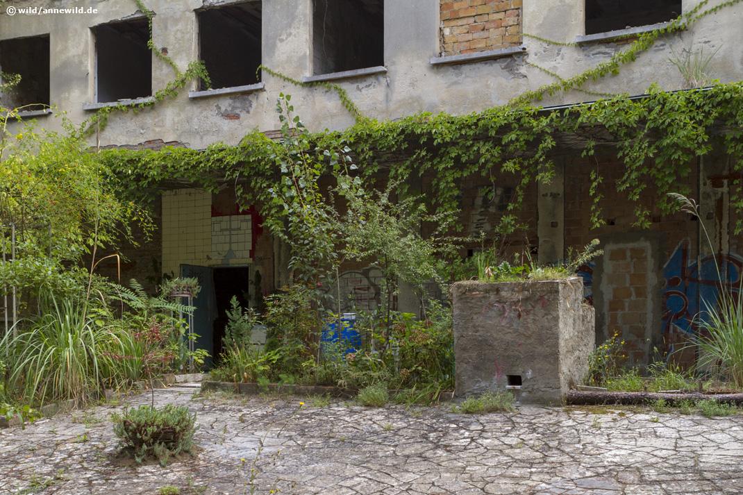 Colonia Varese, Cervia